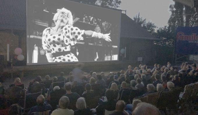 Zuschauer sehen auf die Leinwand beim Freiluftkino 2019 im Kinomuseum Vollbüttel